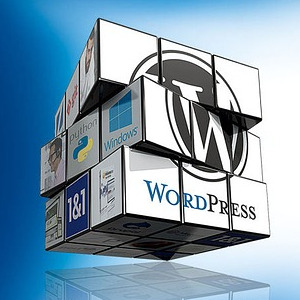 Website with WordPress Training